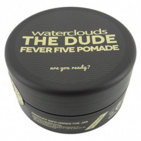 Waterclouds The Dude Fever Five Pomade Plaukų formavimo pomada 100ml